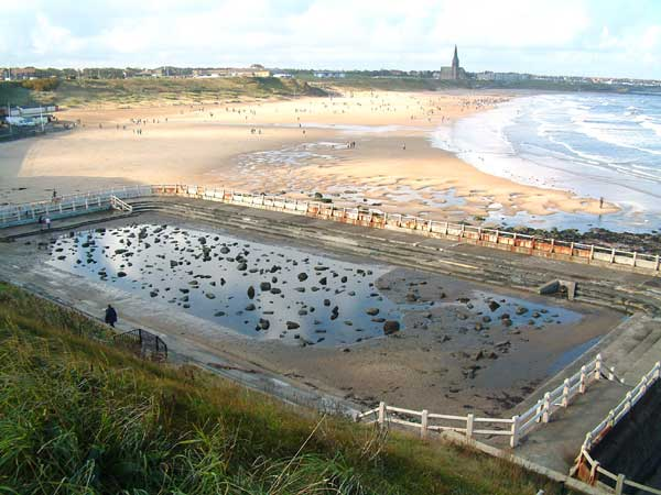Tynemouth Rockpool 17 October 2004